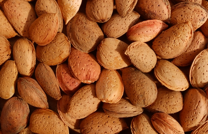 ORGANIC Roasted Salted Almonds 100g