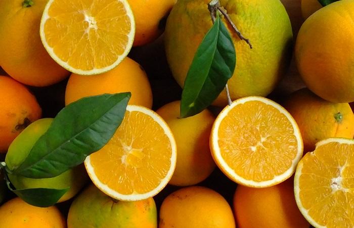 Cubotto with Naveline - Lemons - Tangerines  Primosole ( 7,5+2+2) BIO 11,5 kg